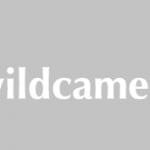 Op zoek naar een geschikte wildcamera?